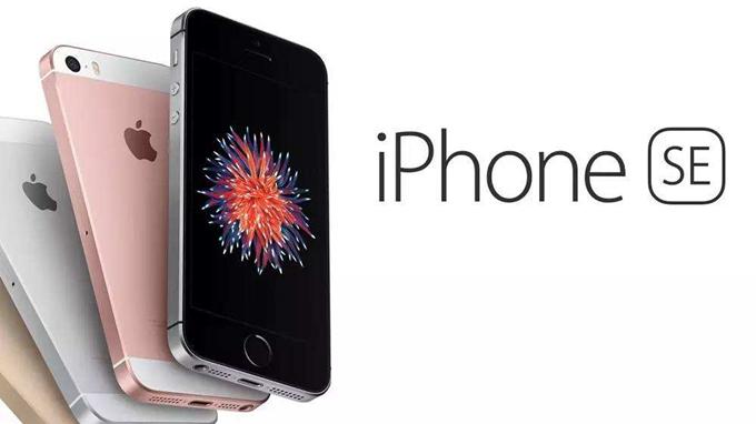 最强苹果分析师郭明錤:iPhone SE 2明年第一季发布