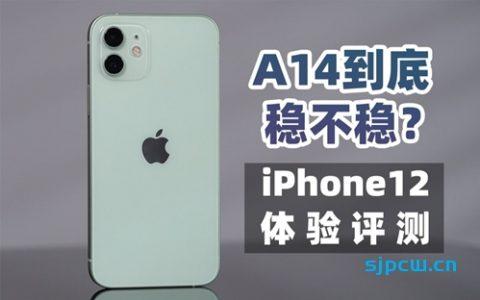 「大米评测」十三香?iPhone12体验评测 对比 iPhone11 | Magsafe慢充体验
